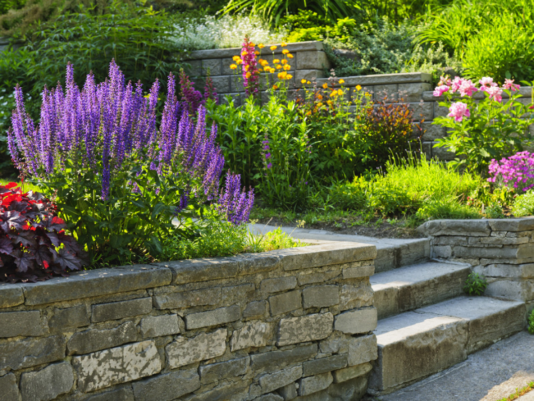 Ready to beautify your backyard?