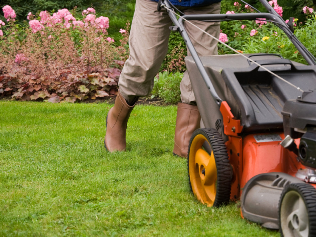 What can 3N Lawncare & Landscape do for your lawn?